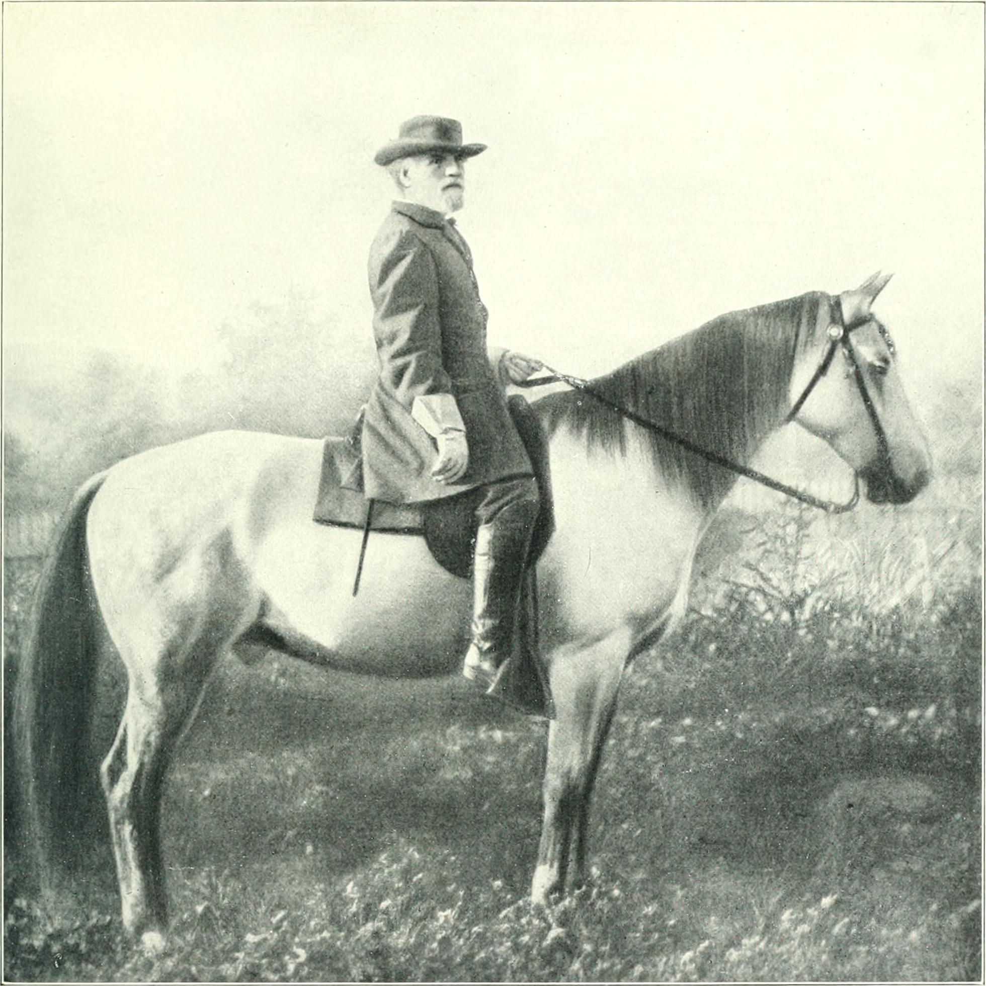 28 Traveller Robert E Lee famoys white horse