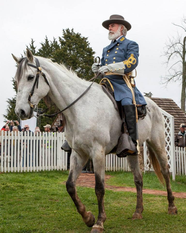 29 Robert E Lee Horse Traveller