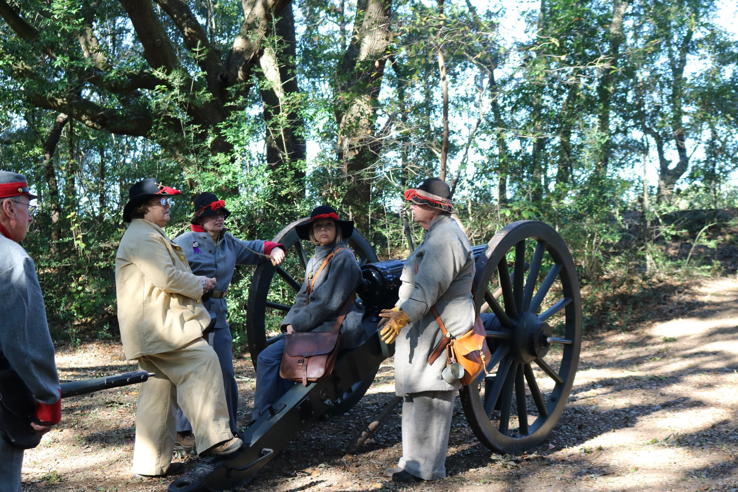 Confederate Artillery 5