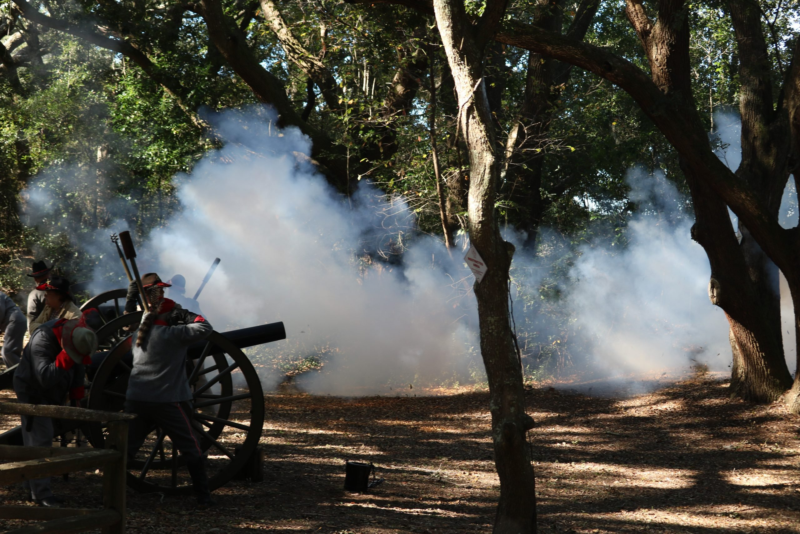 Confederate Cannons 3